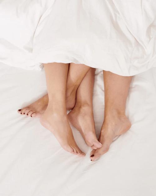 partnerska navezanost in spolnost